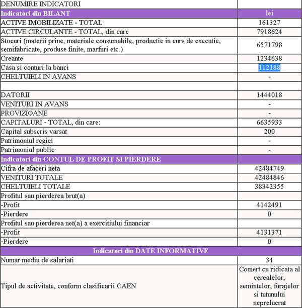 DANIROM-bilant-2013-w
