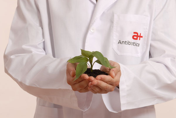 antibiotice-600